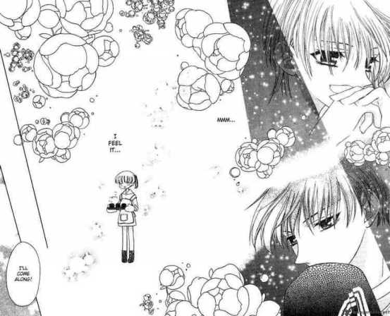 fruits_basket_17_24